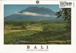 Volcan Mont Agung & Rizières En Terrasse, BALI, Postale Adressée ANDORRA,avec Timbre à Date Arrivée - Indonesia