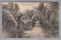 AK Afrika Kongo (belg.) 1913-04-04 Kinshasa GS 5 Cent #14 Avenue Des Palmiers à Banana - Congo Belge - Autres