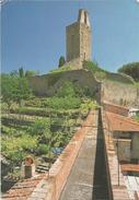 CASTGLION FIORENTINO. Torre Del Cassero.  (scan Verso) - Italia