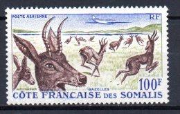 1/ Cote Des Somalis : PA   N° 26  Neuf XX , Cote : 14,00 € , Disperse Trés Grosse Collection ! - Côte Française Des Somalis (1894-1967)