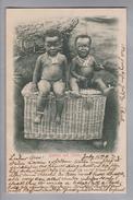 "AK Südafrika Pretoria 1903-07-23 Foto "" Bashful And Cheeky"" - Afrique Du Sud"