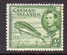 Cayman Islands GVI 1939-48 ½d Definitive, P. 13x12½, Hinged Mint, SG 116 - Kaimaninseln