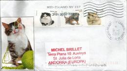 """Lettre """"Pets"""" Etats-Unis ,  Adressée ANDORRA,avec Timbre à Date Arrivée - Domestic Cats"""
