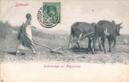 CPA DJIBOUTI Précurseur 1904 Labourage En Abyssinie + Cachet + Timbre Ceylan Sri Lanka - Djibouti