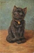 "CHATS - CAT -  ""CHATON "" - CPA  - ILLUSTRATEUR M. STOKS. - Katten"