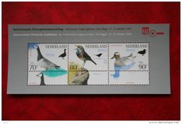 Blok FEPAPOST 94  Vogel Bird Oiseaux Vögel NVPH 1623 (Mi Block 41); 1994 POSTFRIS / MNH ** NEDERLAND / NIEDERLANDE - Period 1980-... (Beatrix)