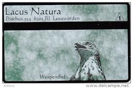 NETHERLANDS - Lacus Natura/Wespendief, CN : 406A, Tirage 1000, Mint - Uccelli
