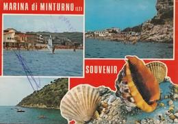 MARINA Di MINTURNO, SOUVENIR, Used Postcard [19451] - Latina