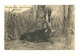 Antilope Cheval Entier Postal, 15 Ctimes Vert - Belgisch-Kongo - Sonstige