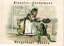 1 TradeCard C1900 Pub Biscuits Cordemans Parein  Borgerhout Anvers  Kikkers  Dressed  Frogs  Grenouilles Frog Litho RARE - Confectionery & Biscuits