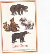 CPM   OURS - Schweine