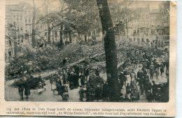 BELGIUM - Den Haag Fallen Tree - Grand Hotel Du Nord Et Royal Nord Bruxells - Interesting & Unusual Card - Rampen