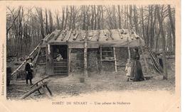 FORET DE SENART 91 - Une Cabane De Bûcheron - BE - Sénart