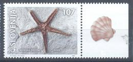 Slovenia Slovenie Slowenien 2001 Mint MNH **: Fossils; Fosil Fosille; Asteroidea; Starfish; Seestern; étoiles De Mer;