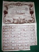 SOCIÉTÉ DE NAVIGATION TRANSOCÉANIQUE ACTION DE 500 FRANC 1919 - Navigation