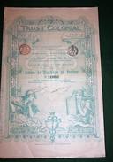 TRUST COLONIAL ACTION DE DIVIDENDE BRUXELLES 1899 - Banque & Assurance