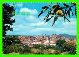 VISEU, PORTUGAL - VISTA PARCIAL - VUE PARTIELLE DE LA VILLE DE VISEU - - Viseu