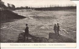 HAMME: Overstroming Van 12 Maart 1906 - 1 Hamme (drij Goten) - Een Der Scheldedijkbreuken - Hamme