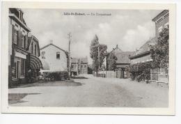 Sint-Huibrechts-Lille   -  Lille-St-Hubert  - De Dorpstraat - Neerpelt