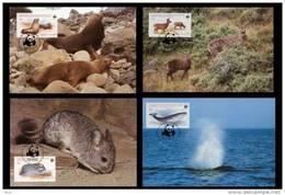 Chile 1984 WWF W.W.F. Set X4 Maximum Cards Fauna Chinchilla Antilope Baleine Phoque - Maximum Cards