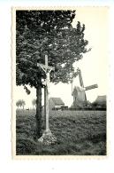 Sint-Eloois Winkel - De Molen /J. Oost-Vanhevel - Ledegem