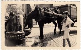 FOTOGRAFIA - OLD PHOTO - BAMBINO CON CAVALLO ALLA FONTANELLA - Vedi Retro - Mestieri