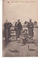 Algérie - Charmeur De Serpents   : Achat Immédiat - Professions
