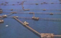 CPA - Baku ( Bakou ) - View Of The Neftyanys Kamni Oil Works - Azerbaïjan