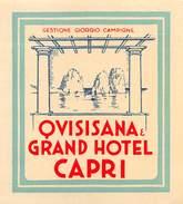 """D5488  """"QVISISANA & GRAND HOTEL CAPRI - GESTIONE GIORGIO CAMPIONE""""   ETICHETTA ORIGINALE - ORIGINAL LABEL - Adesivi Di Alberghi"""