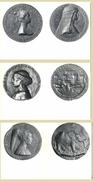 3 CARTES PHOTO MEDAILLES MATTEO DE PASTI - CANDIDA - Monnaies (représentations)