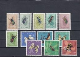 Pologne - Neufs** - Année 1962 - Insectes Divers - YT 1140/1151 - Nuovi