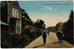 Whiteley Woods, Entrance, Sheffield (pk32599) - Sheffield