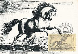 D28881 CARTE MAXIMUM CARD 1969 CZECHOSLOVAKIA - HORSE BY HENDRIK GOLTZIUS CP ORIGINAL
