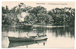 Océanie / PAPOUASIE - NOUVELLE-GUINEE : ARAPOKINA. - Papua New Guinea