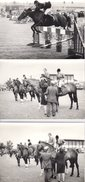 3 Grandes Photos Originales Animaux - Equitation - Le Cheval, Saut D'Obstacles Et Remise De Prix - Pin-Ups