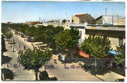 - 33 - FERRYVILLE - L'Avenue De France, Petit Format, écrite En Mai 1956, TBE, Scans. - Algerije