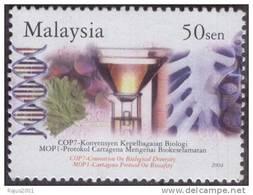 DNA Thread, Genetics, Chemistry, Herbs  Biology MNH Malaysia