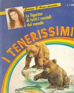 I TENERISSIMI  -Edizione  De Agostini Junior  -1991  (231009) - Figurines