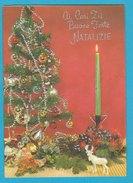 LETTERINA  Di NATALE  CON PRESEPE Apribile - SCRITTA -Anni 60 (231009) - Motiv 'Weihnachten'