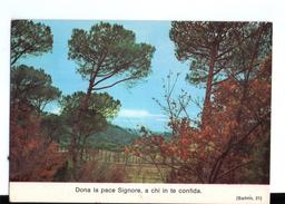 S2596 Cartolina Con Citazione Religiosa Dei Salmi -  CITAZIONE, CITATION, CITIZEN _ SCRITTA 1975 MA NON CIRCOLATA - Filosofia & Pensatori