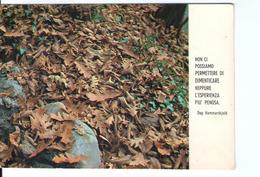 S2597 Cartolina Con Citazione Dag Hammarskjold -  CITAZIONE, CITATION, CITIZEN _ Ed. Paoline B26 - Filosofia & Pensatori