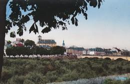 58---DECIZE---vue Générale Et Pont Sur La Vieille Loire--voir 2 Scans - Decize
