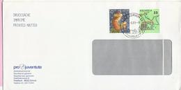 Envelope - Stamp Pro Juventute 1987 / 1988, Zurich, 1989., Switzerland (Helvetia) - Pro Juventute
