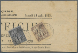 1893 (14.10.), Piece Of Newspaper From 12th August 1893 Franked With Two Allegorie Stamps 1c Black On Blue And 4c...
