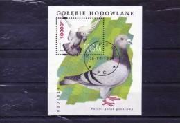 POLOGNE: BF N°136 - Pigeons & Columbiformes