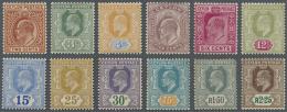 1903/1905, 2c. To 2r.25, Wm Crown CA, Complete Set Of Twelve Value, Fresh Colours, Mint O.g., Few Imperfections.... - Sri Lanka (Ceylon) (1948-...)
