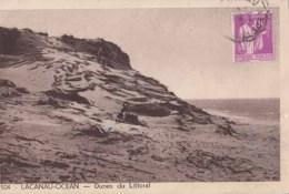 Dep 33 - Lacanau Ocean - Dunes Du Littoral  : Achat Immédiat - France