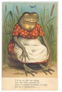 Cp. 28 Postkarte Postal Card Carte Cartolina Postale. Grenouille Frog Frosch Rana - Tierwelt & Fauna