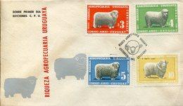 18061 Uruguay, Fdc 1967, Merinos,sheep(wool) Ovine (laine) Merinoschaf (feinwoll) - Ferme