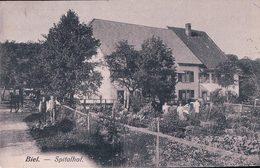 Biel, Spitalhof, Attelage (4.10.09) - BE Bern